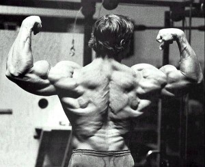 arnold schwarzenegger bodybuilding photos_on3